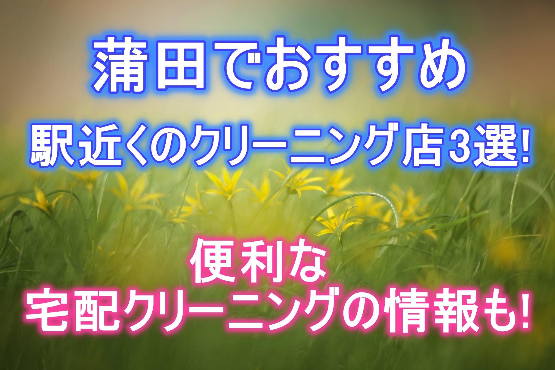 蒲田のおすすめクリーニング3選!便利な宅配クリーニングの情報も!
